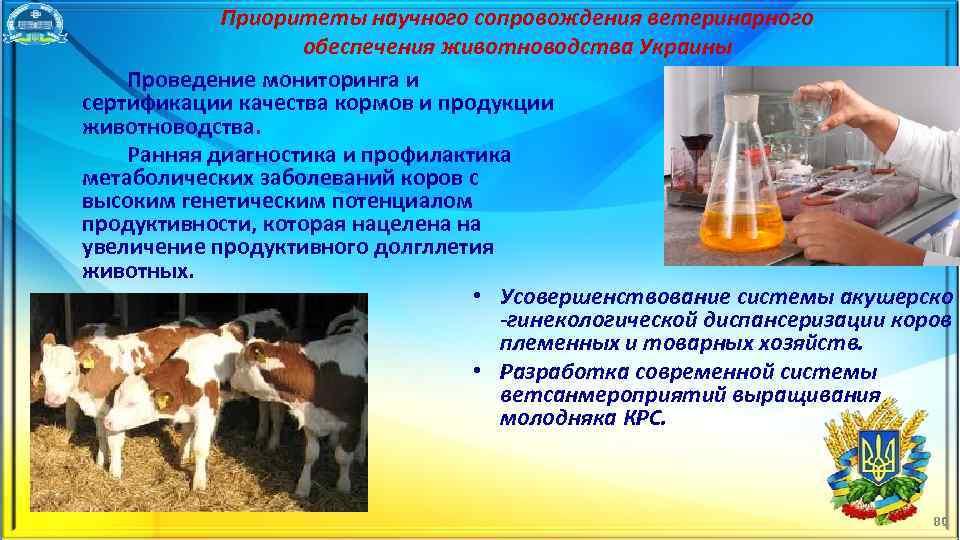 Приоритеты научного сопровождения ветеринарного обеспечения животноводства Украины Проведение мониторинга и сертификации качества кормов