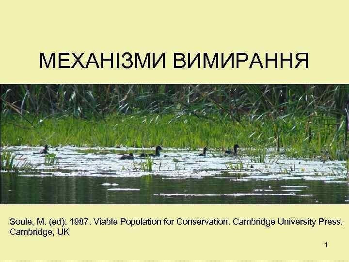 МЕХАНІЗМИ ВИМИРАННЯ Soule, M. (ed). 1987. Viable Population for Conservation. Cambridge University Press, Cambridge,