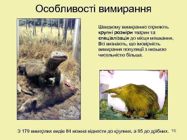 Особливості вимирання Швидкому вимиранню сприяють крупні розміри тварин та спеціалізація до місця мешкання. Всі