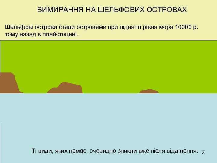 ВИМИРАННЯ НА ШЕЛЬФОВИХ ОСТРОВАХ Шельфові острови стали островами при піднятті рівня моря 10000 р.
