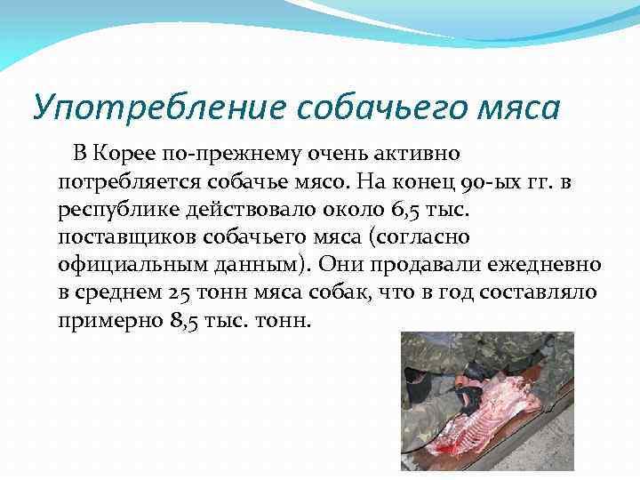 Употребление собачьего мяса В Корее по-прежнему очень активно потребляется собачье мясо. На конец 90