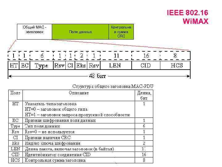 Общий МАС заголовок Поле данных Контрольна я сумма CRC IEEE 802. 16 Wi. MAX
