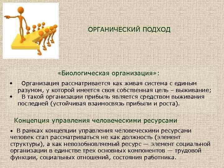 ОРГАНИЧЕСКИЙ ПОДХОД «Биологическая организация» : • Организация рассматривается как живая система с единым разумом,