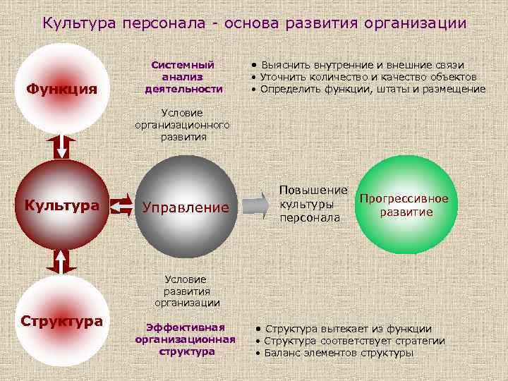 Культура персонала - основа развития организации Функция Системный анализ деятельности • Выяснить внутренние и