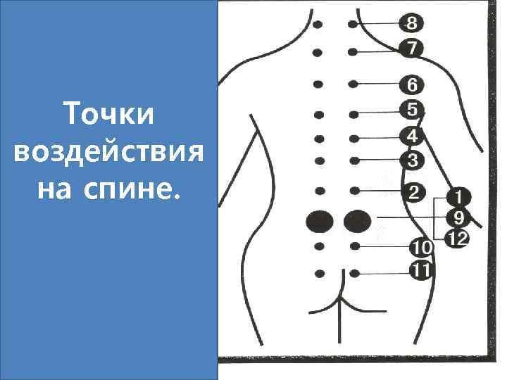 Точки воздействия на спине.