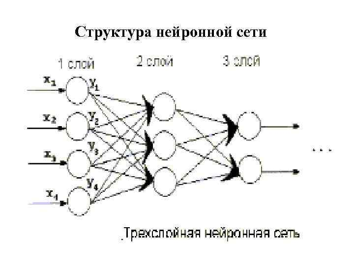 Структура нейронной сети ANNs are taught by system developer at concrete cases. While teaching