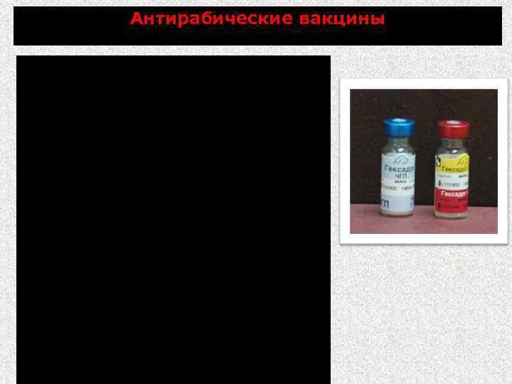 Антирабические вакцины РАБИКАН - инактивированная антирабическая вакцина из штамма «Щелково – 51» Вакцина антирабическая