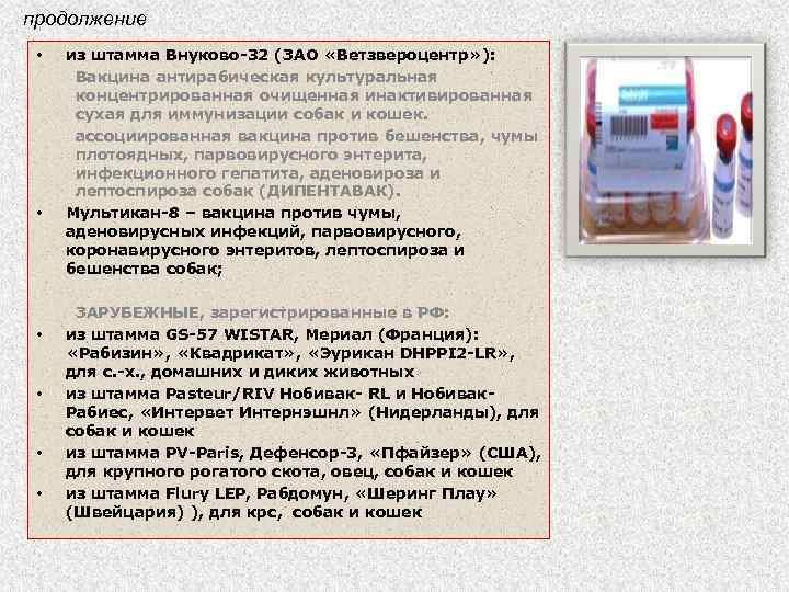 продолжение • • • из штамма Внуково-32 (ЗАО «Ветзвероцентр» ): Вакцина антирабическая культуральная концентрированная