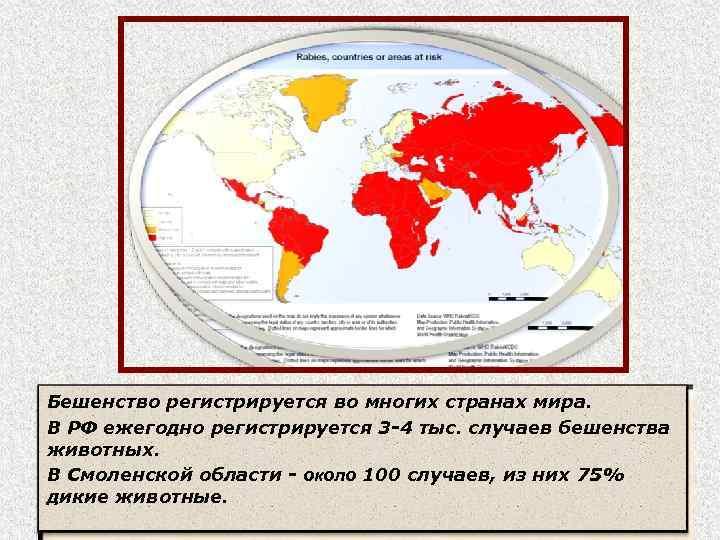 Бешенство регистрируется во многих странах мира. В РФ ежегодно регистрируется 3 -4 тыс. случаев