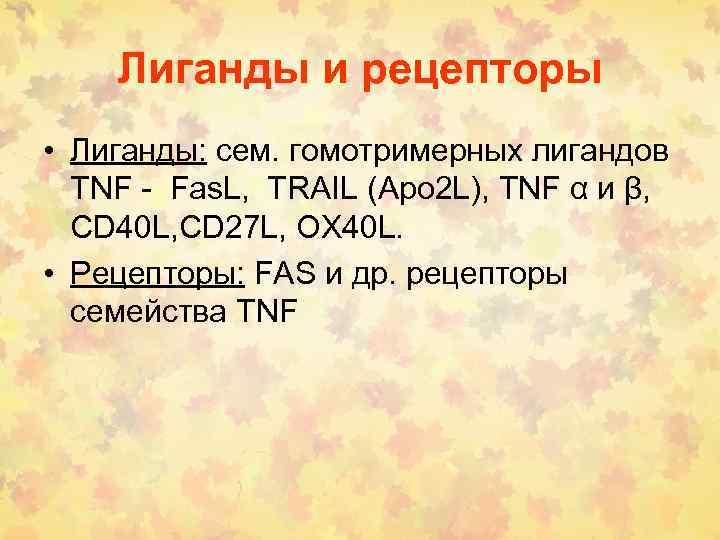 Лиганды и рецепторы • Лиганды: сем. гомотримерных лигандов TNF - Fas. L, TRAIL (Apo