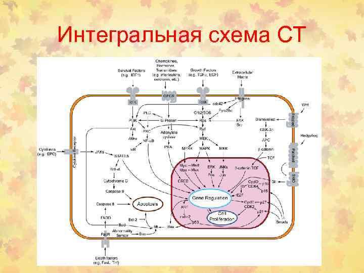 Интегральная схема СТ