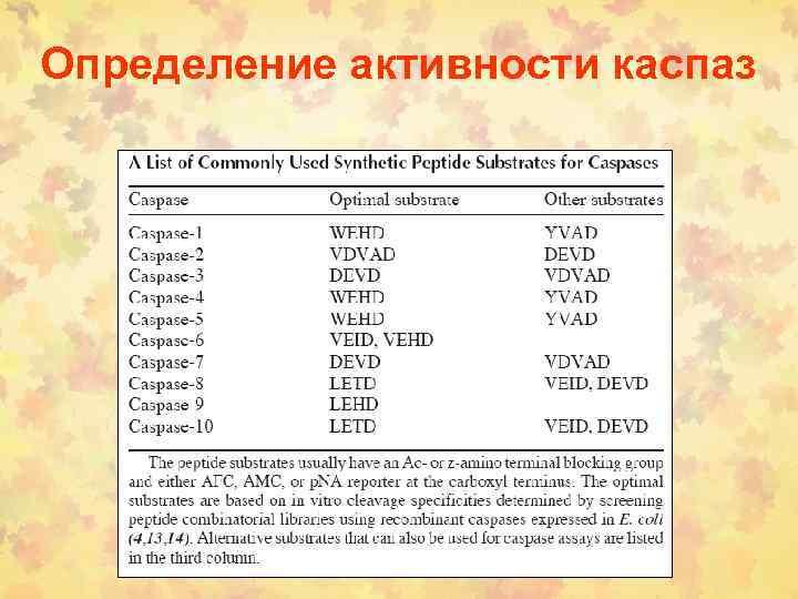 Определение активности каспаз