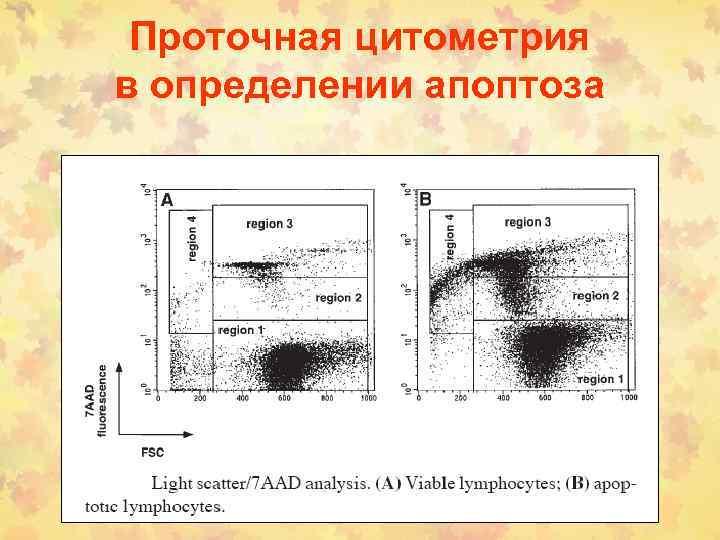 Проточная цитометрия в определении апоптоза