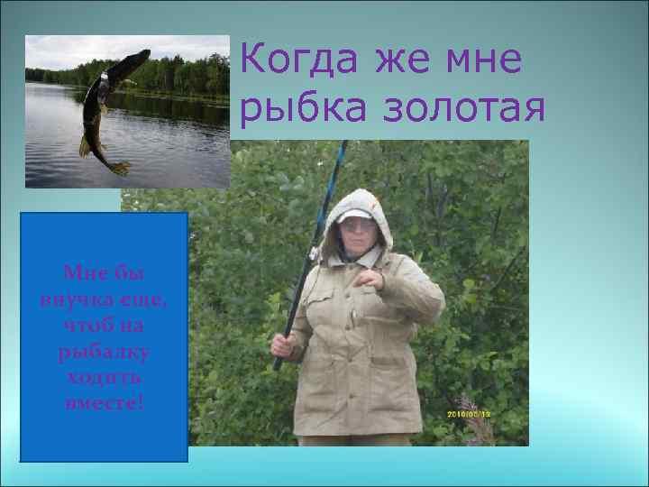 Когда же мне рыбка золотая попадется? Мне бы внучка еще, чтоб на рыбалку ходить