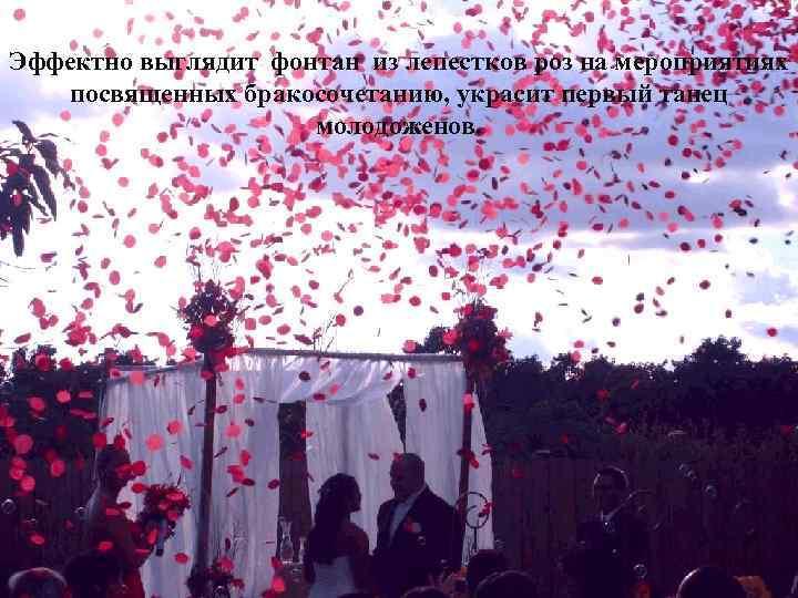 Эффектно выглядит фонтан из лепестков роз на мероприятиях посвященных бракосочетанию, украсит первый танец молодоженов.