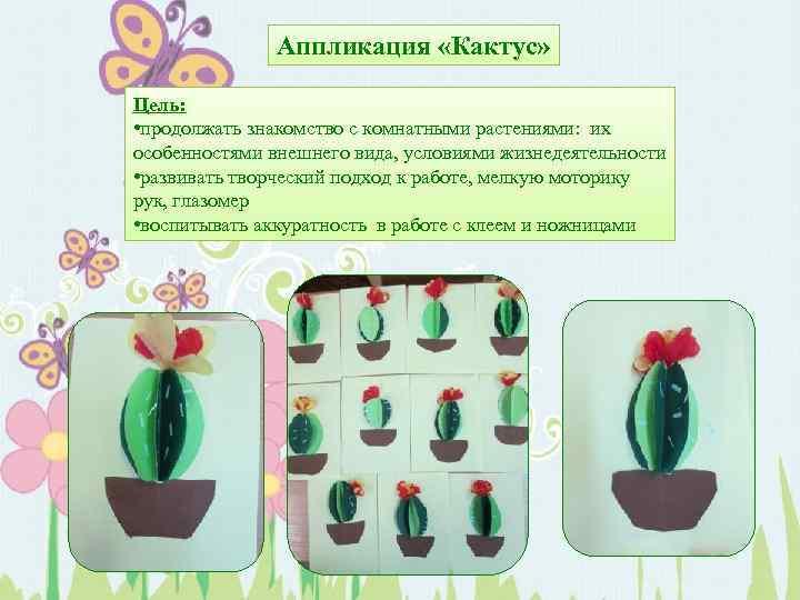 Аппликация «Кактус» Цель: • продолжать знакомство с комнатными растениями: их особенностями внешнего вида, условиями
