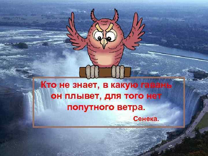 Кто не знает, в какую гавань он плывет, для того нет попутного ветра. Сенека.
