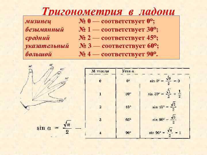 Тригонометрия в ладони мизинец безымянный средний указательный большой № 0 — соответствует 0°; №
