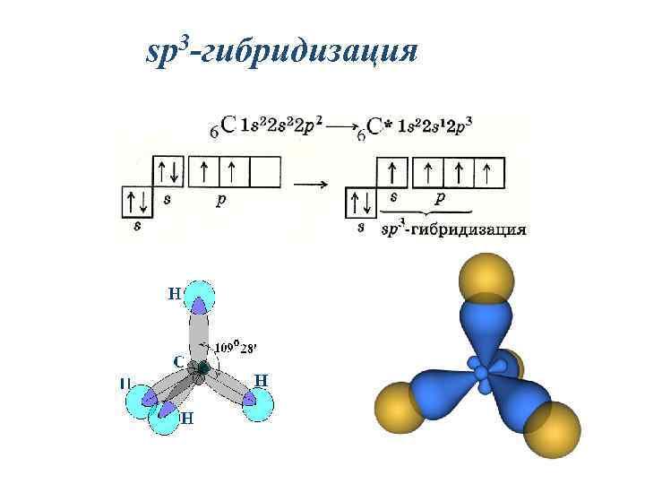 sp 3 -гибридизация