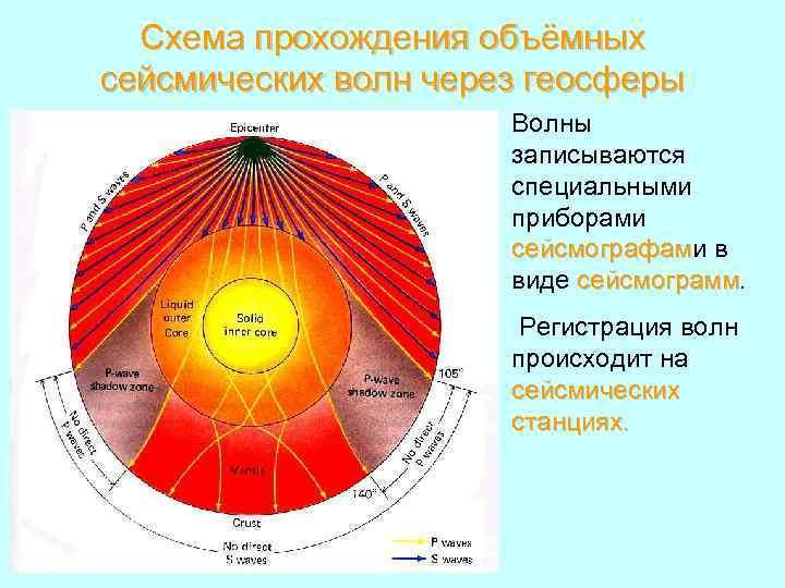 Схема прохождения объёмных сейсмических волн через геосферы Волны записываются специальными приборами сейсмографами в сейсмографам