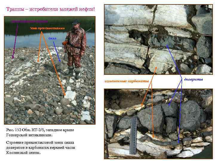 Траппы – истребители залежей нефти! неизмененные породы зона ороговикования силл измененные карбонаты Рис. 132