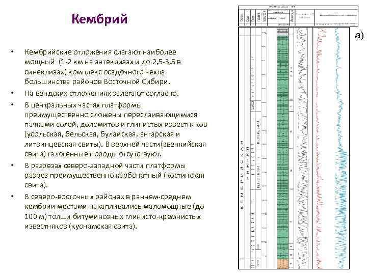 Кембрий а) • • • Кембрийские отложения слагают наиболее мощный (1 -2 км на