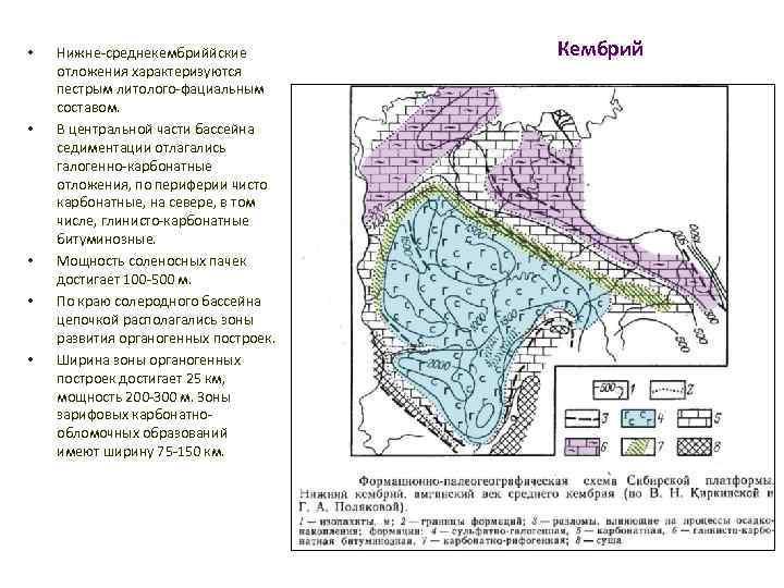 • • • Нижне-среднекембриййские отложения характеризуются пестрым литолого-фациальным составом. В центральной части бассейна