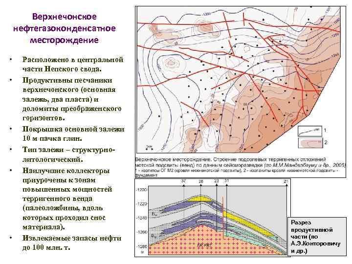 Верхнечонское нефтегазоконденсатное месторождение • • • Расположено в центральной части Непского свода. Продуктивны песчаники