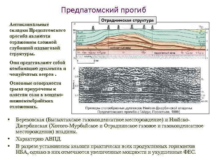 Предпатомский прогиб Антиклинальные складки Предпатомского прогиба являются отражением сложной глубинной надвиговой структуры. Отраднинская структура