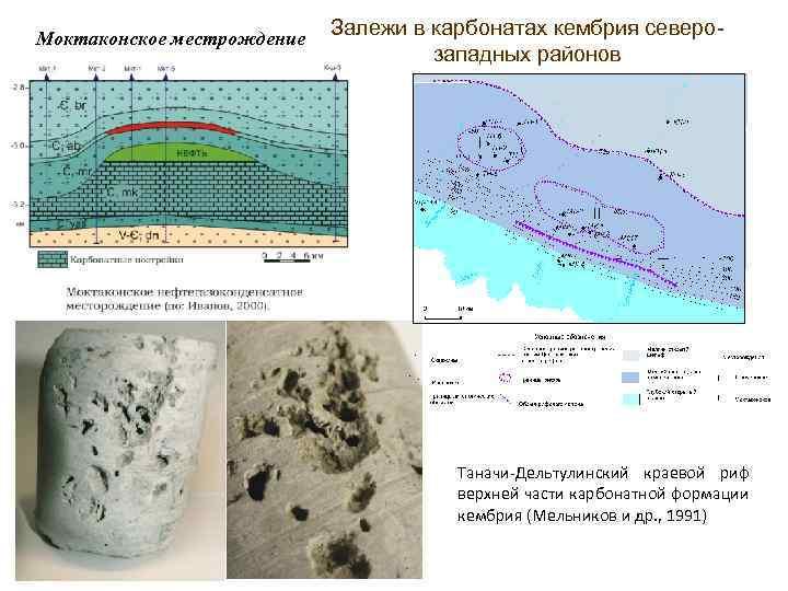 Моктаконское местрождение Залежи в карбонатах кембрия северозападных районов Таначи-Дельтулинский краевой риф верхней части карбонатной