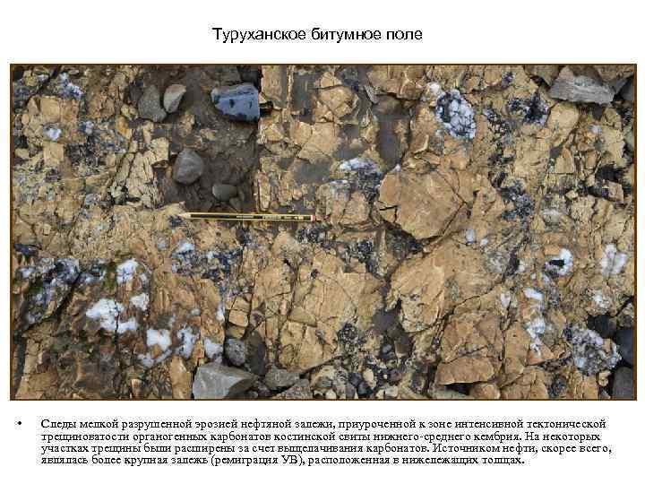 Туруханское битумное поле • Следы мелкой разрушенной эрозией нефтяной залежи, приуроченной к зоне интенсивной