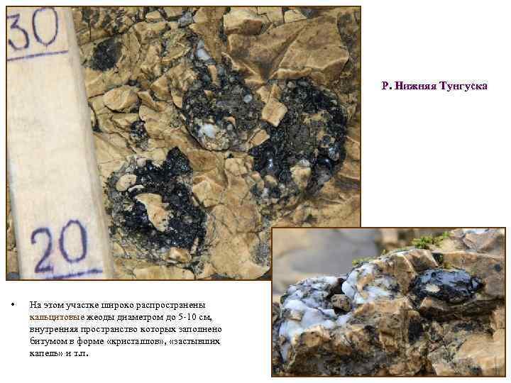 Р. Нижняя Тунгуска • На этом участке широко распространены кальцитовые жеоды диаметром до 5