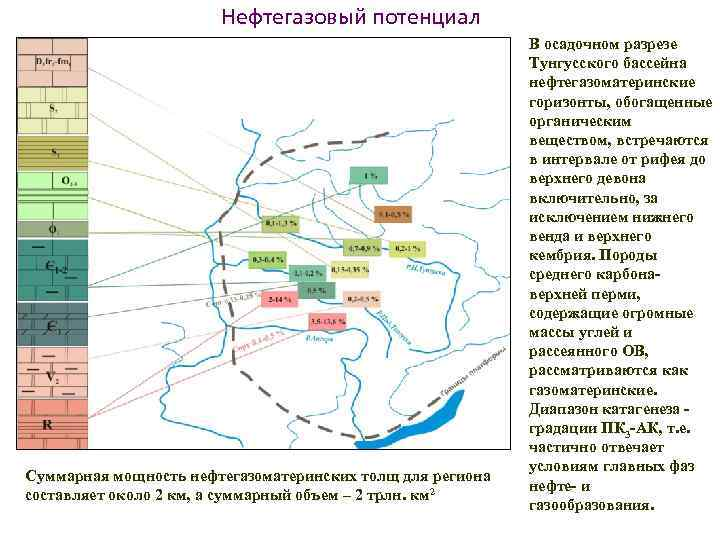 Нефтегазовый потенциал Суммарная мощность нефтегазоматеринских толщ для региона составляет около 2 км, а суммарный