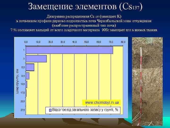 Замещение элементов (Cs 137) Диаграмма распределения Cs 137 (замещает K) в почвенном профиле дерново-подзолистых