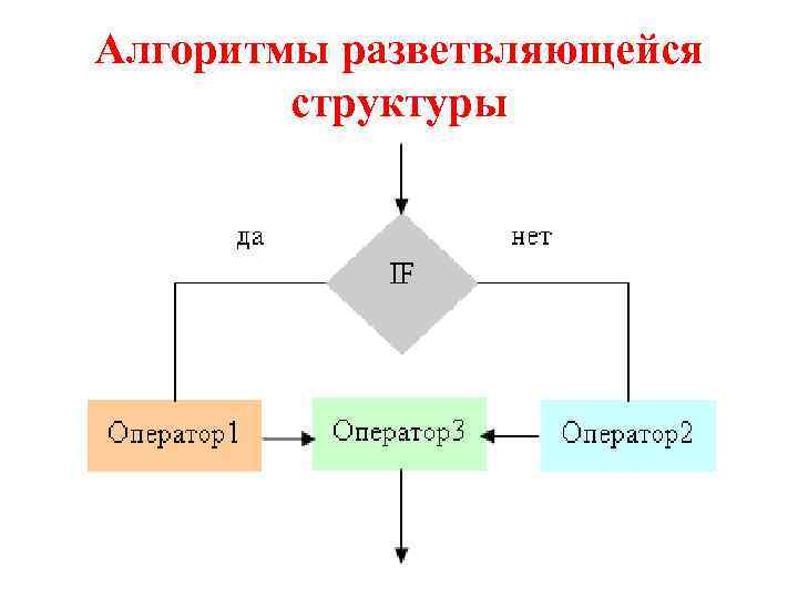 Алгоритмы разветвляющейся структуры