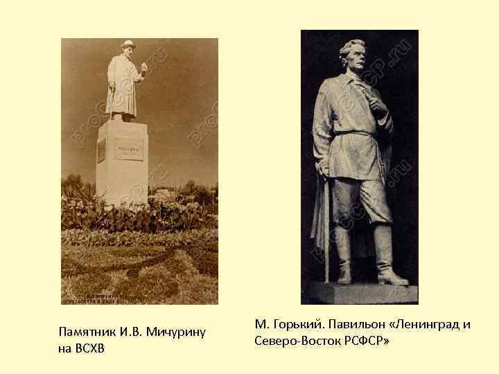 Памятник И. В. Мичурину на ВСХВ М. Горький. Павильон «Ленинград и Северо-Восток РСФСР»