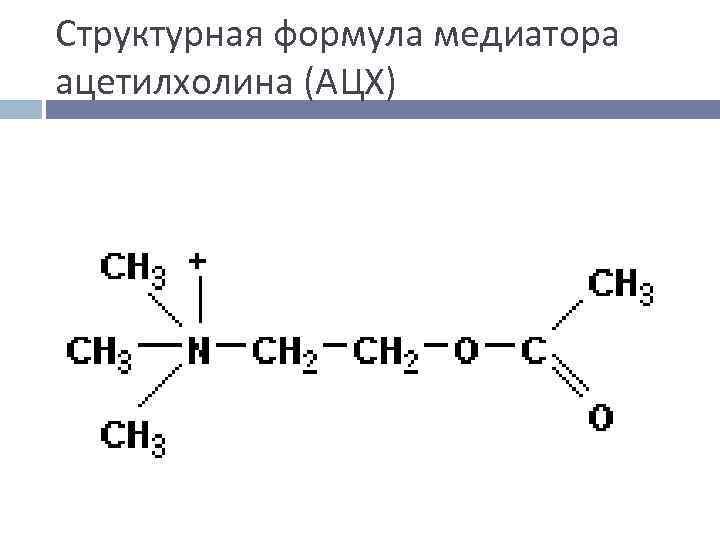 Структурная формула медиатора ацетилхолина (АЦХ)