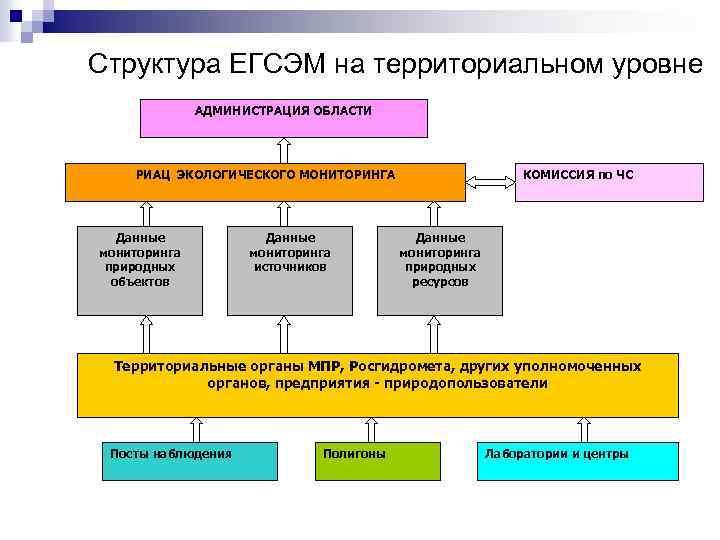 Структура ЕГСЭМ на территориальном уровне АДМИНИСТРАЦИЯ ОБЛАСТИ РИАЦ ЭКОЛОГИЧЕСКОГО МОНИТОРИНГА Данные мониторинга природных объектов