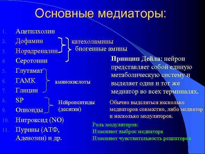 Основные медиаторы: Ацетилхолин 2. Дофамин катехоламины биогенные амины 3. Норадреналин Принцип Дейла: нейрон 4.