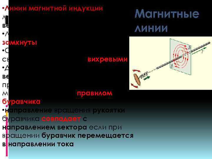 • Линии магнитной индукции – это линии, в каждой точке которых вектор направлен