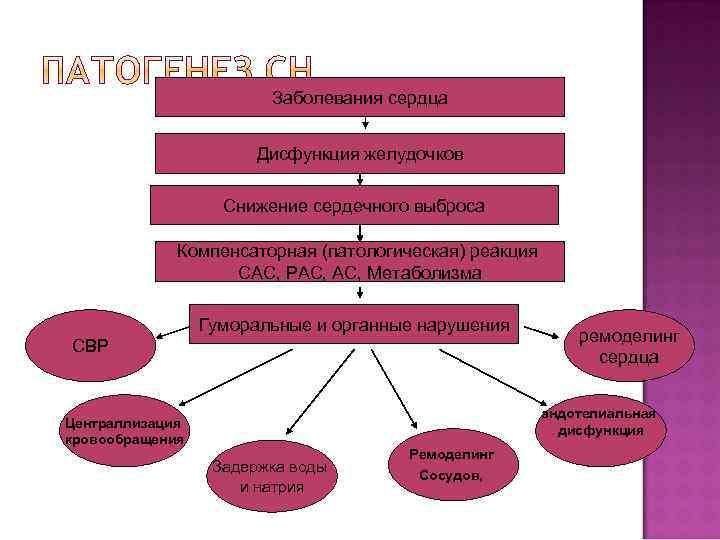 Заболевания сердца Дисфункция желудочков Снижение сердечного выброса Компенсаторная (патологическая) реакция САС, РАС, Метаболизма Гуморальные