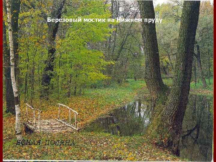 Березовый мостик на Нижнем пруду