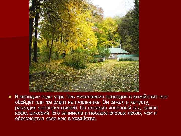 n В молодые годы утро Лев Николаевич проводил в хозяйстве: все обойдет или же