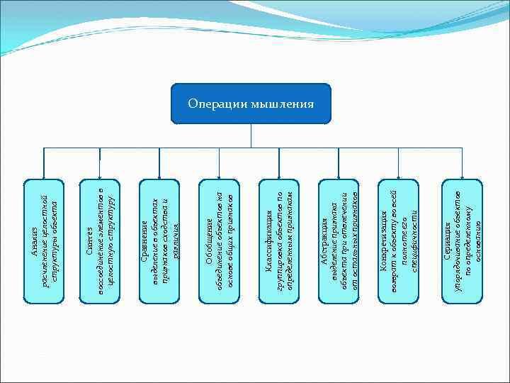 Сериация упорядочивание объектов по определенному основанию Конкретизация возврат к объекту во всей полноте его