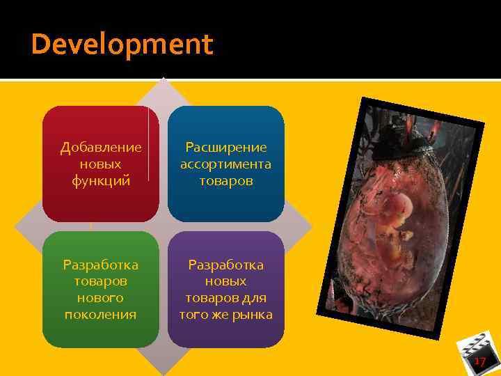 Development Добавление новых функций Расширение ассортимента товаров Разработка товаров нового поколения Разработка новых товаров