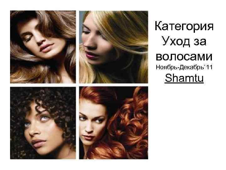 Категория Уход за волосами Ноябрь-Декабрь`11 Shamtu