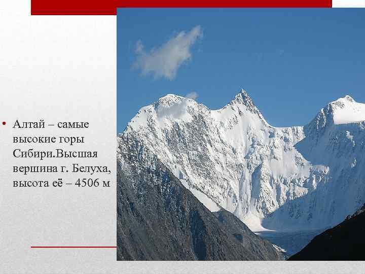 • Алтай – самые высокие горы Сибири. Высшая вершина г. Белуха, высота её