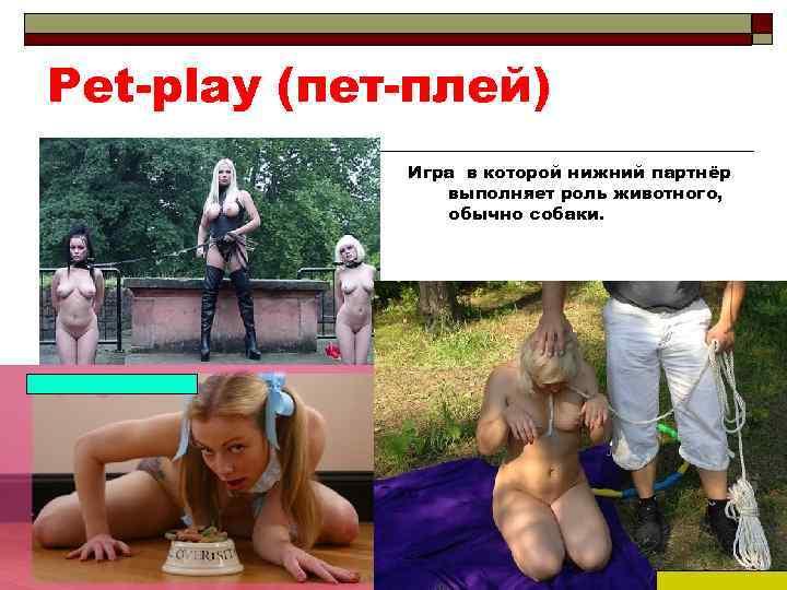 Pet-play (пет-плей) Игра в которой нижний партнёр выполняет роль животного, обычно собаки.