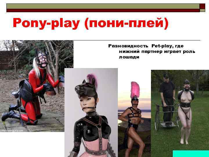 Pony-play (пони-плей) Разновидность Pet-play, где нижний партнер играет роль лошади