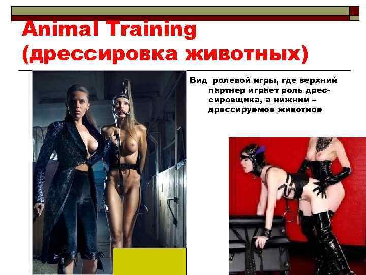 Animal Training (дрессировка животных) Вид ролевой игры, где верхний партнер играет роль дрессировщика, а